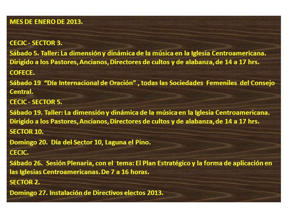 MES DE ENERO DE 2013. CECIC - SECTOR 3.
