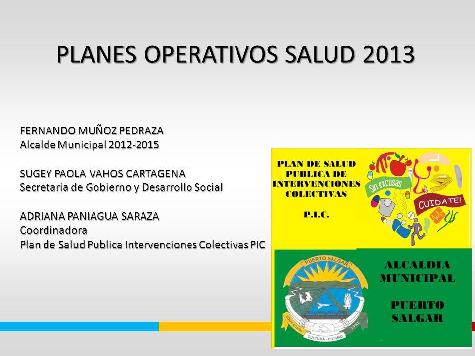 PLANES OPERATIVOS SALUD 2013