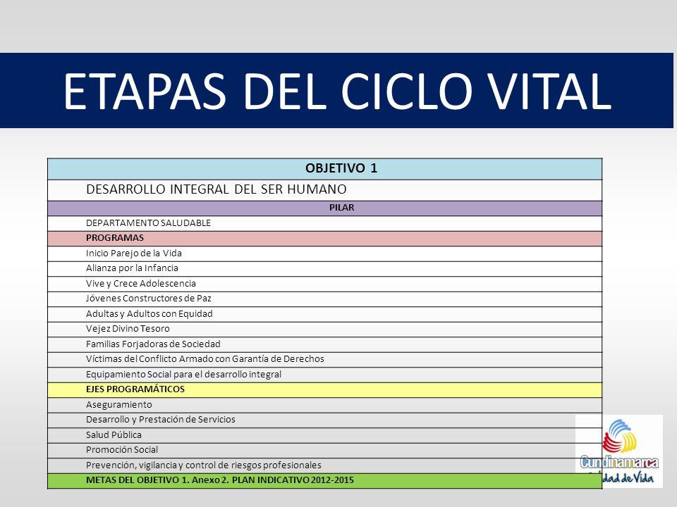 ETAPAS DEL CICLO VITAL OBJETIVO 1 DESARROLLO INTEGRAL DEL SER HUMANO