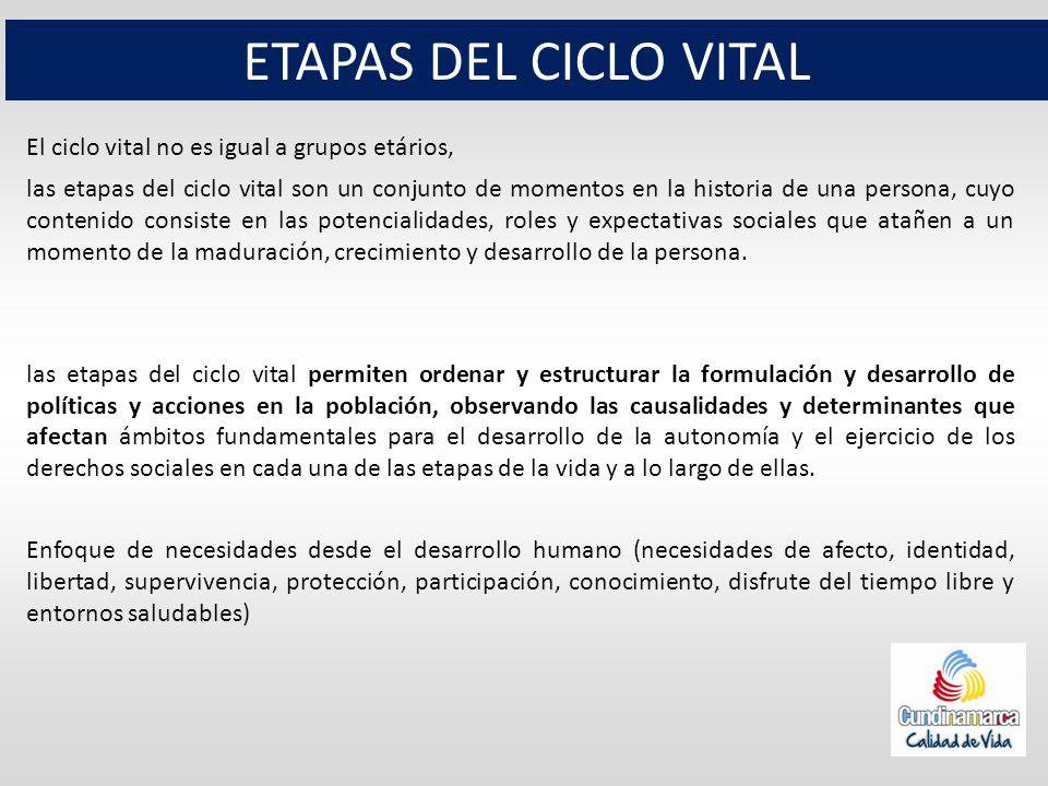 ETAPAS DEL CICLO VITAL El ciclo vital no es igual a grupos etários,