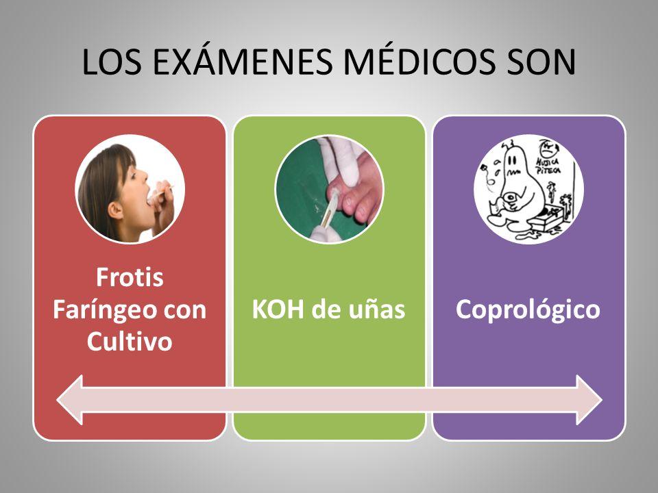 LOS EXÁMENES MÉDICOS SON
