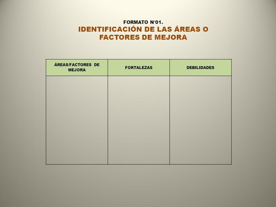 ÁREAS/FACTORES DE MEJORA