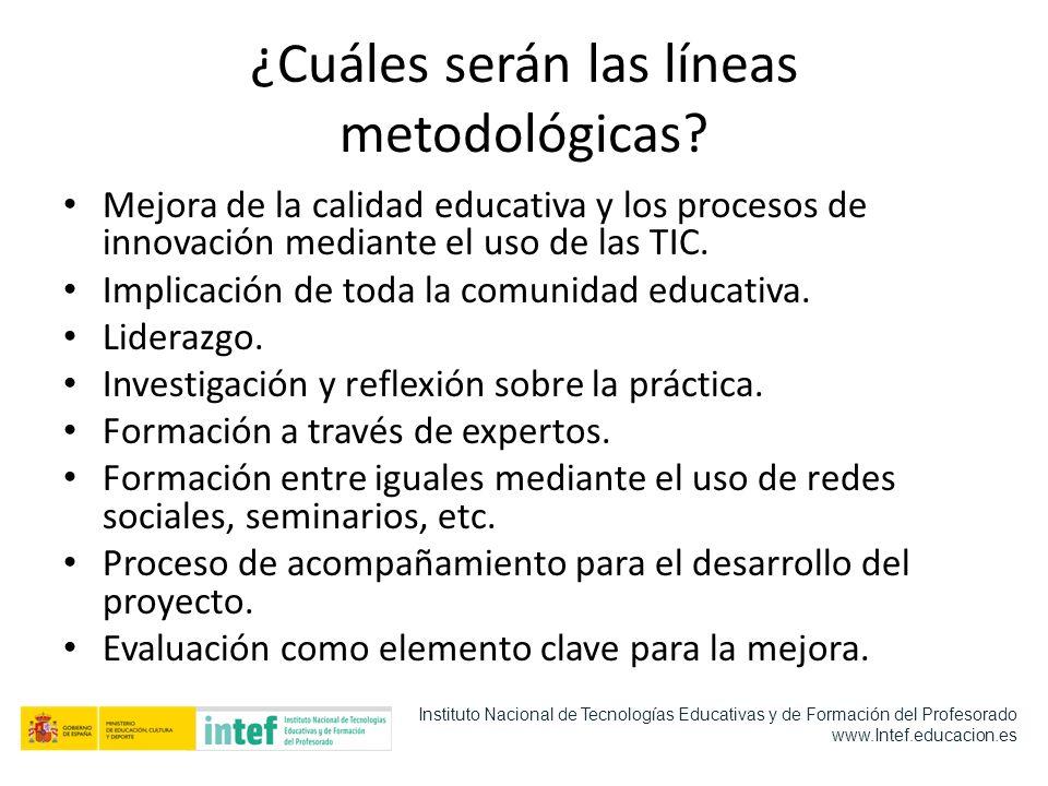 ¿Cuáles serán las líneas metodológicas