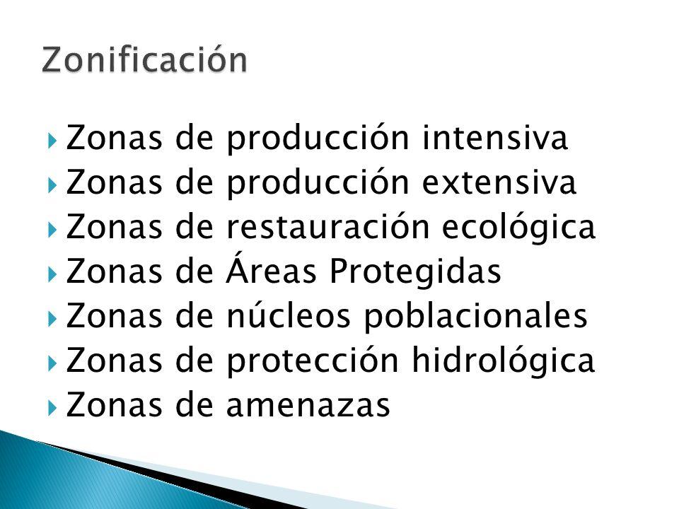Zonificación Zonas de producción intensiva