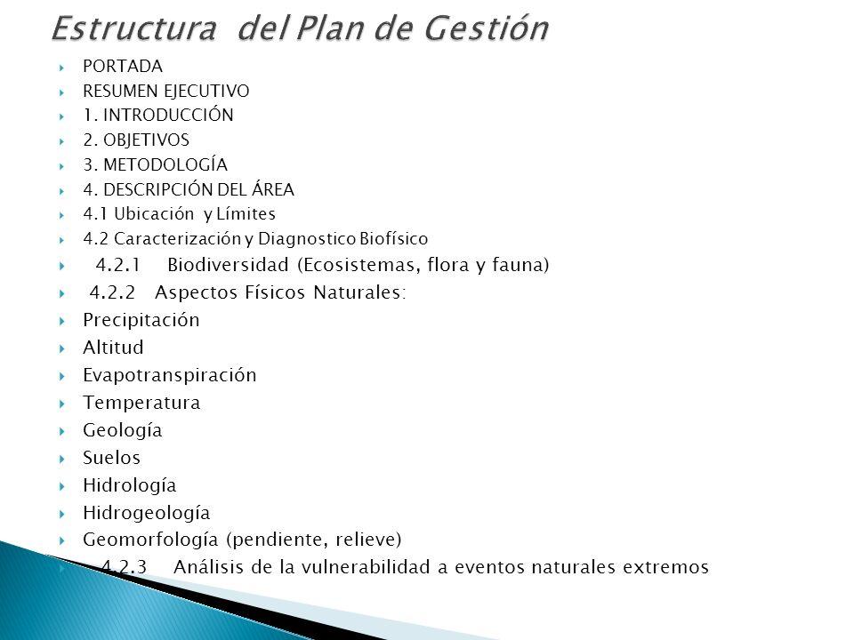 Estructura del Plan de Gestión