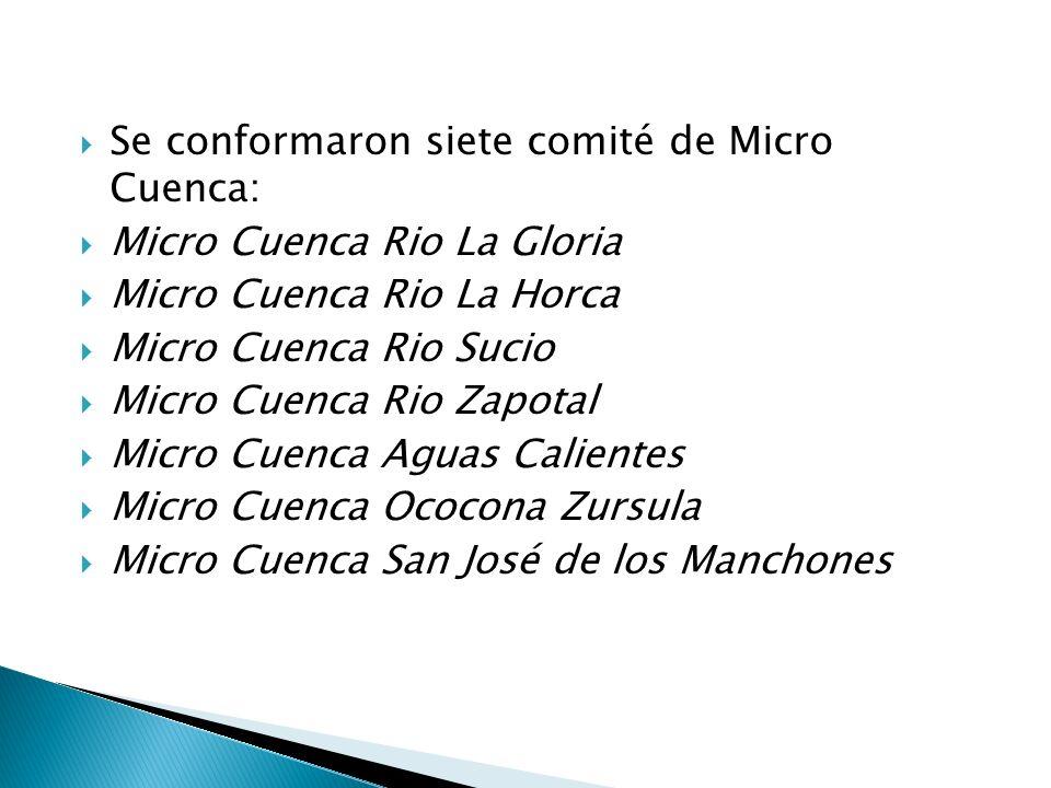 Se conformaron siete comité de Micro Cuenca: