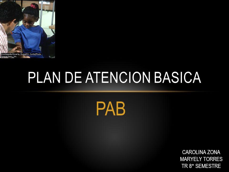 PLAN DE ATENCION BASICA