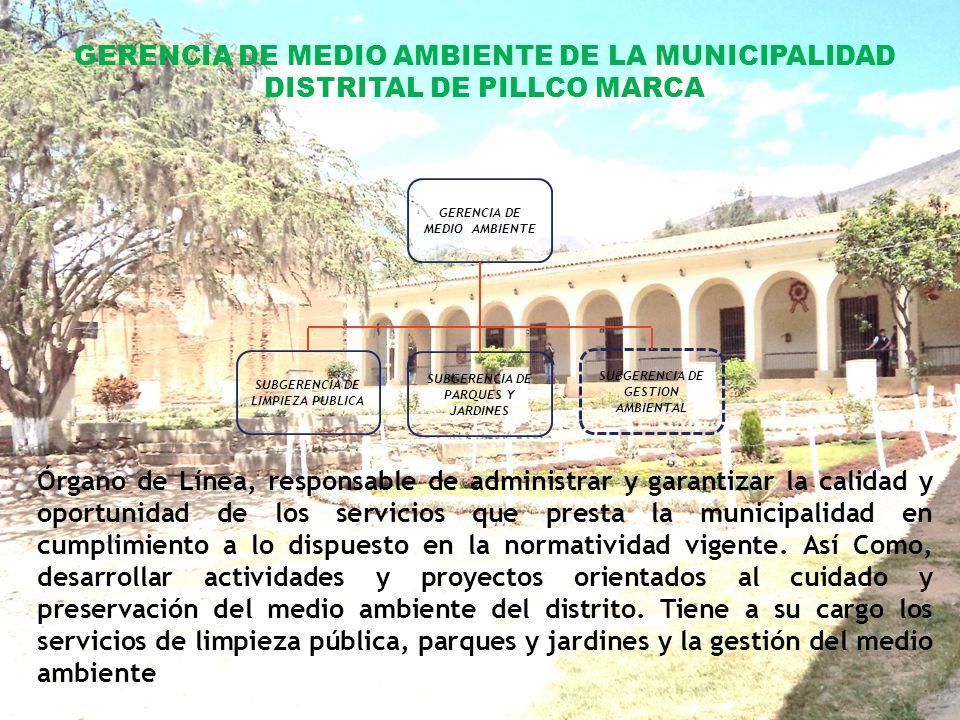 GERENCIA DE MEDIO AMBIENTE DE LA MUNICIPALIDAD DISTRITAL DE PILLCO MARCA
