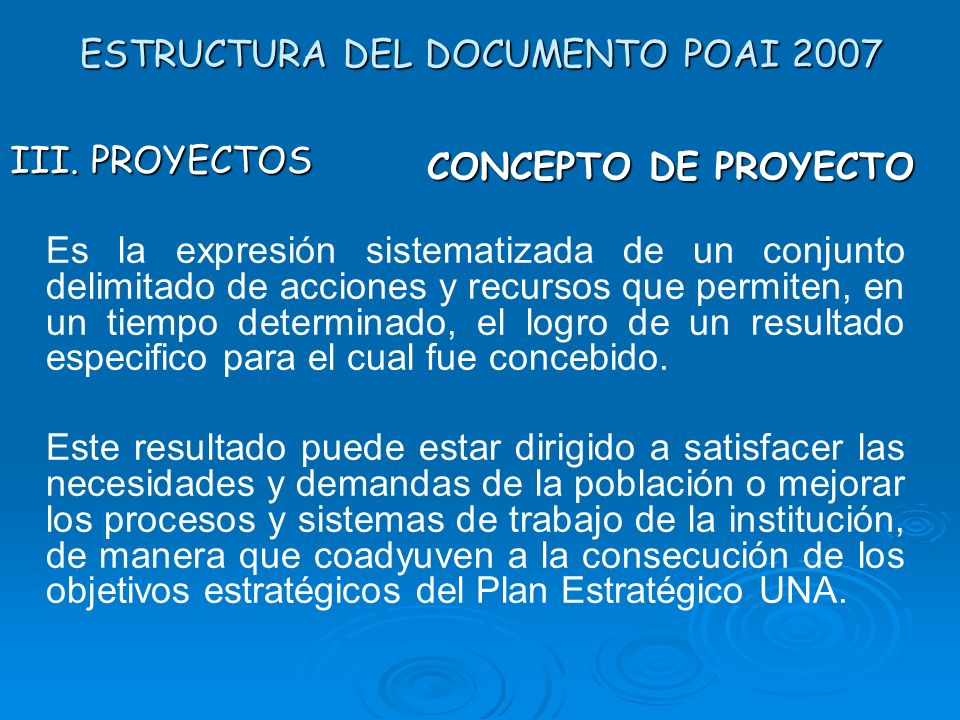 ESTRUCTURA DEL DOCUMENTO POAI 2007