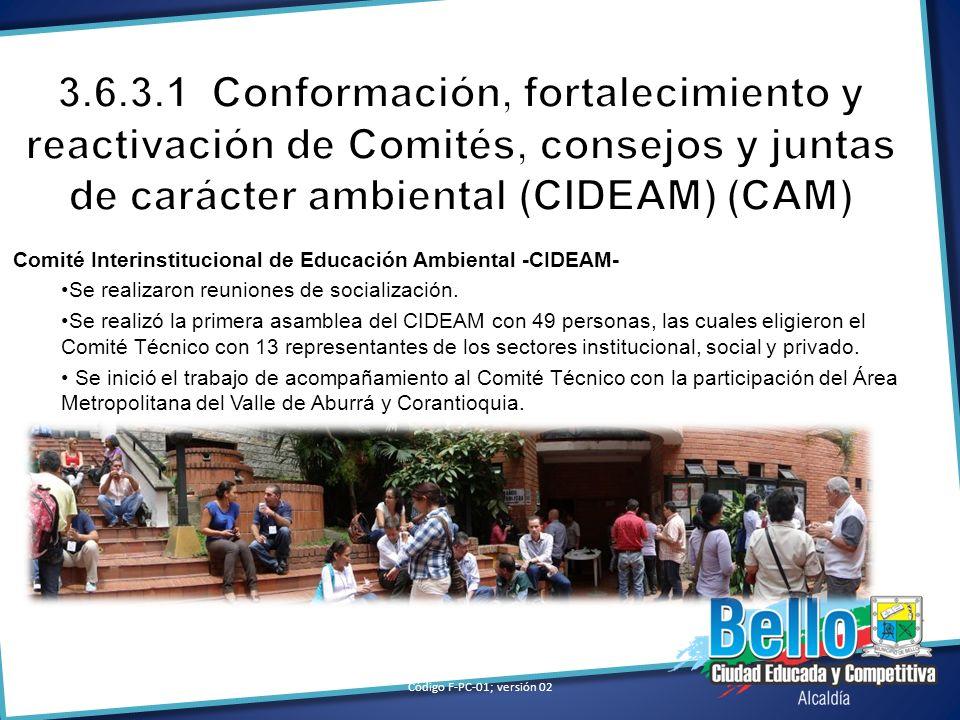 3.6.3.1 Conformación, fortalecimiento y reactivación de Comités, consejos y juntas de carácter ambiental (CIDEAM) (CAM)
