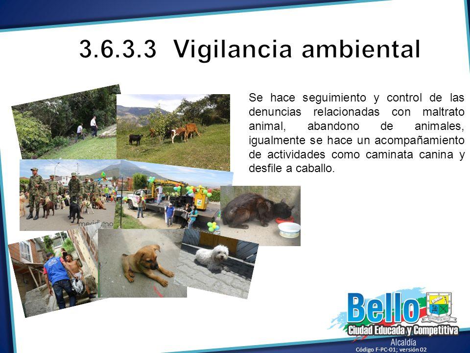 3.6.3.3 Vigilancia ambiental