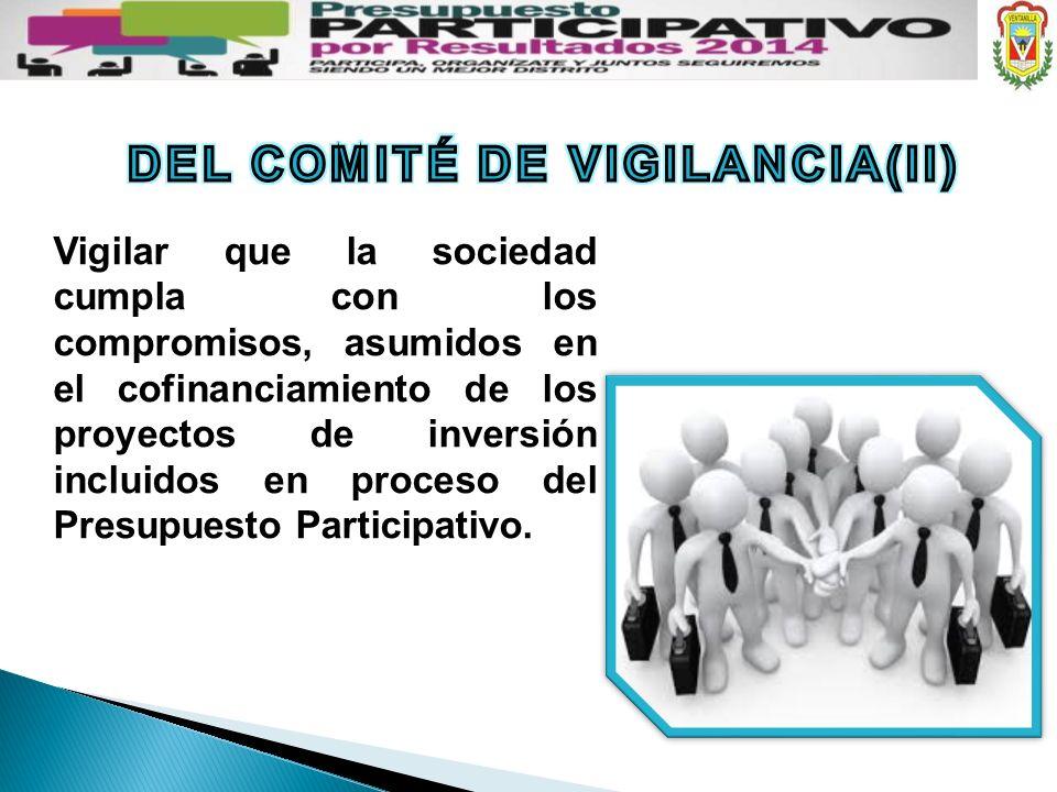 DEL COMITÉ DE VIGILANCIA(II)
