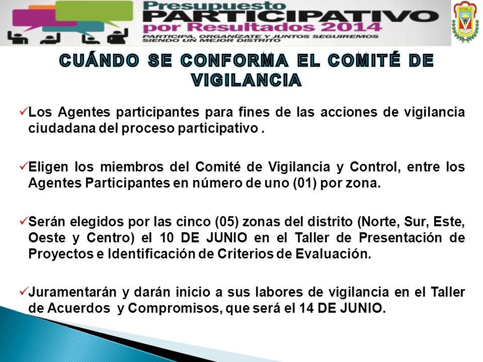 CUÁNDO SE CONFORMA EL COMITÉ DE VIGILANCIA
