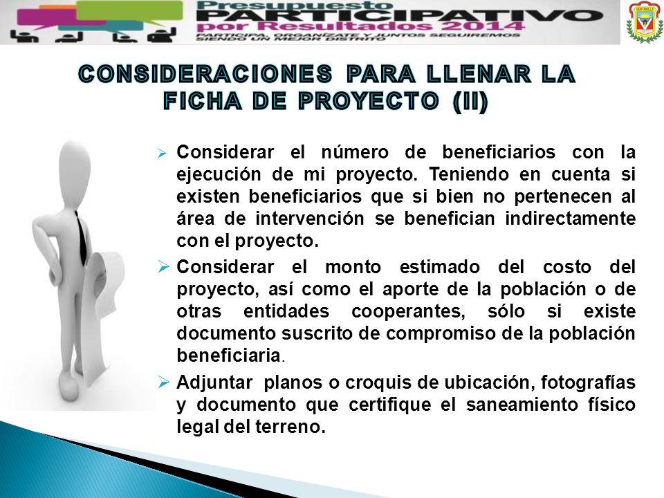 CONSIDERACIONES PARA LLENAR LA FICHA DE PROYECTO (II)