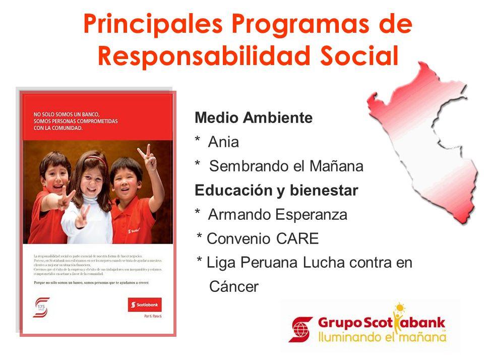 Principales Programas de Responsabilidad Social