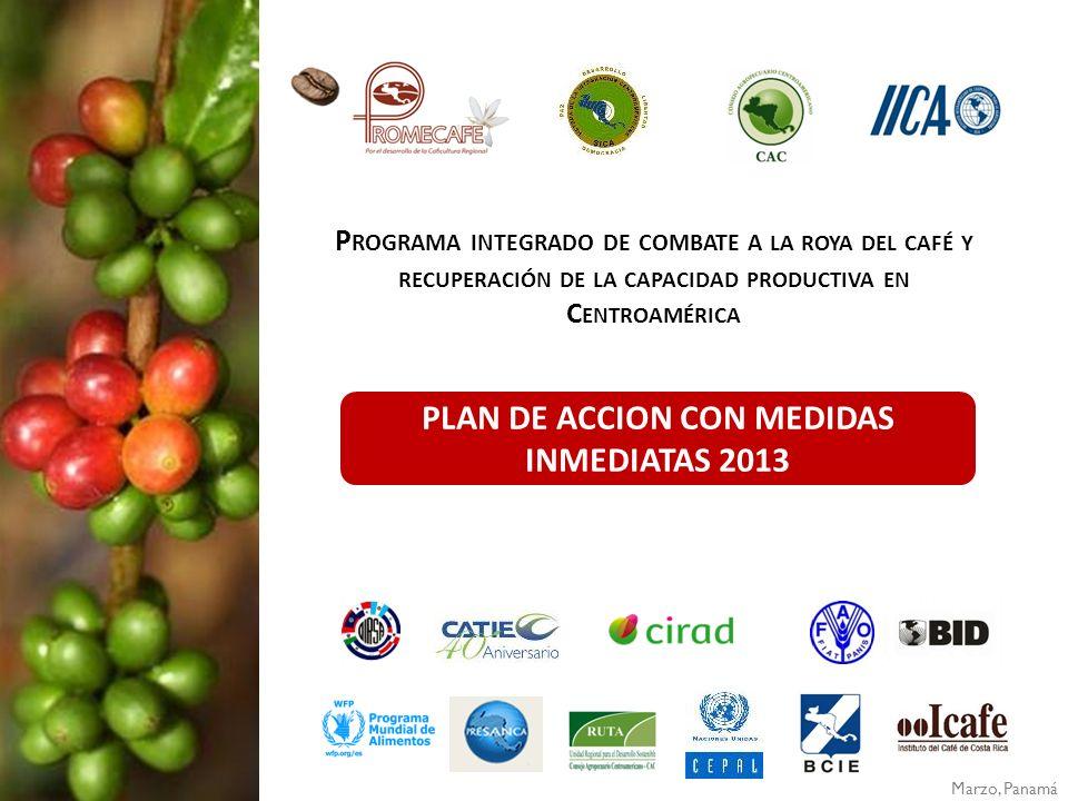 PLAN DE ACCION CON MEDIDAS INMEDIATAS 2013