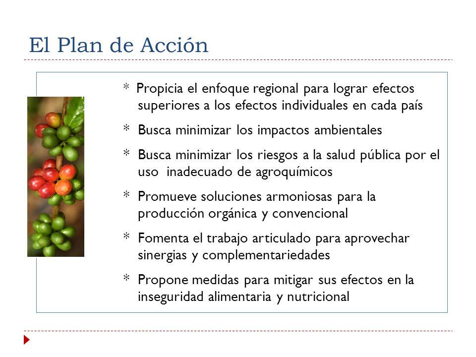 El Plan de Acción * Busca minimizar los impactos ambientales