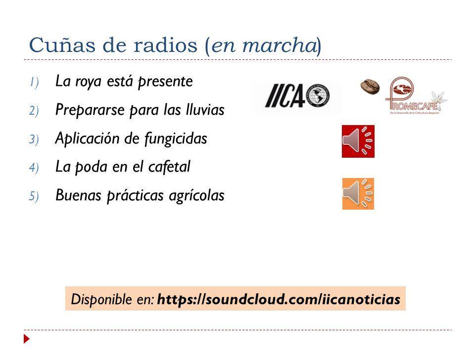 Cuñas de radios (en marcha)