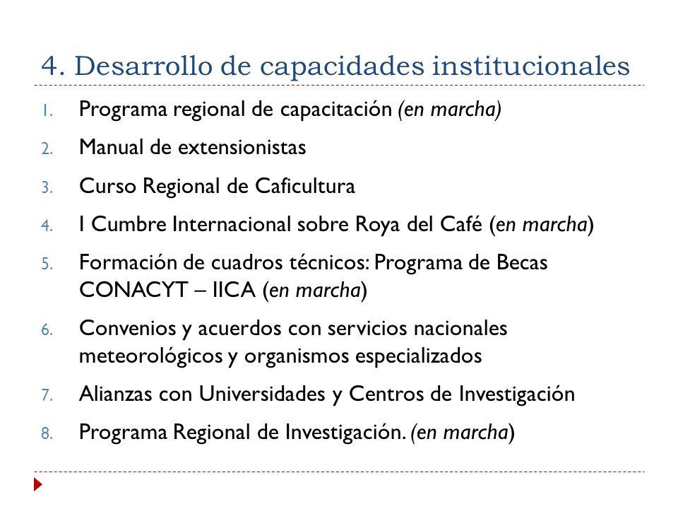 4. Desarrollo de capacidades institucionales