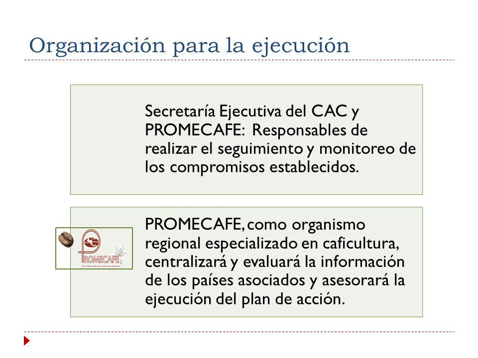 Organización para la ejecución
