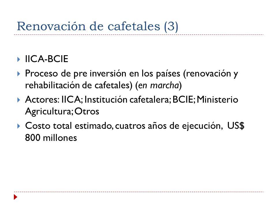 Renovación de cafetales (3)