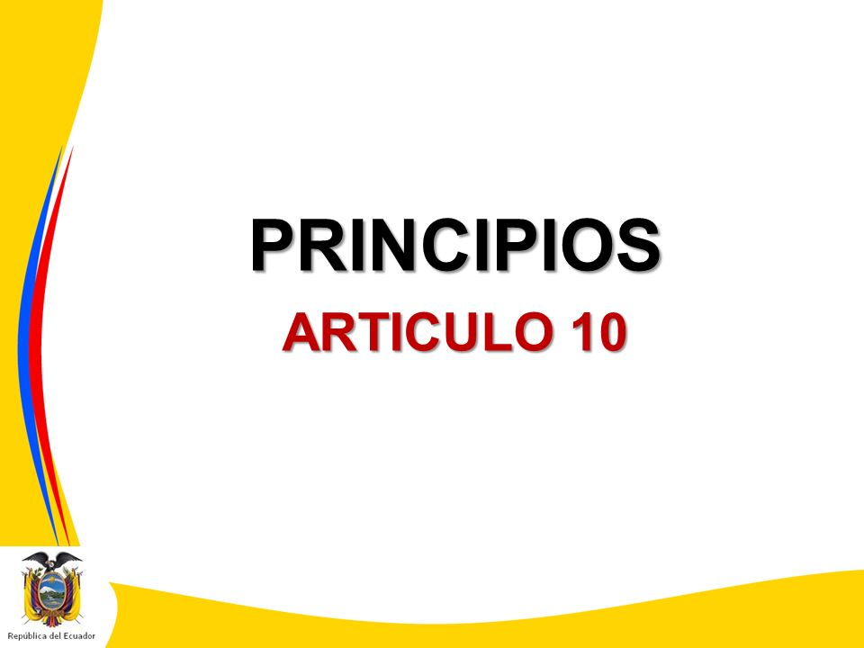 PRINCIPIOS ARTICULO 10