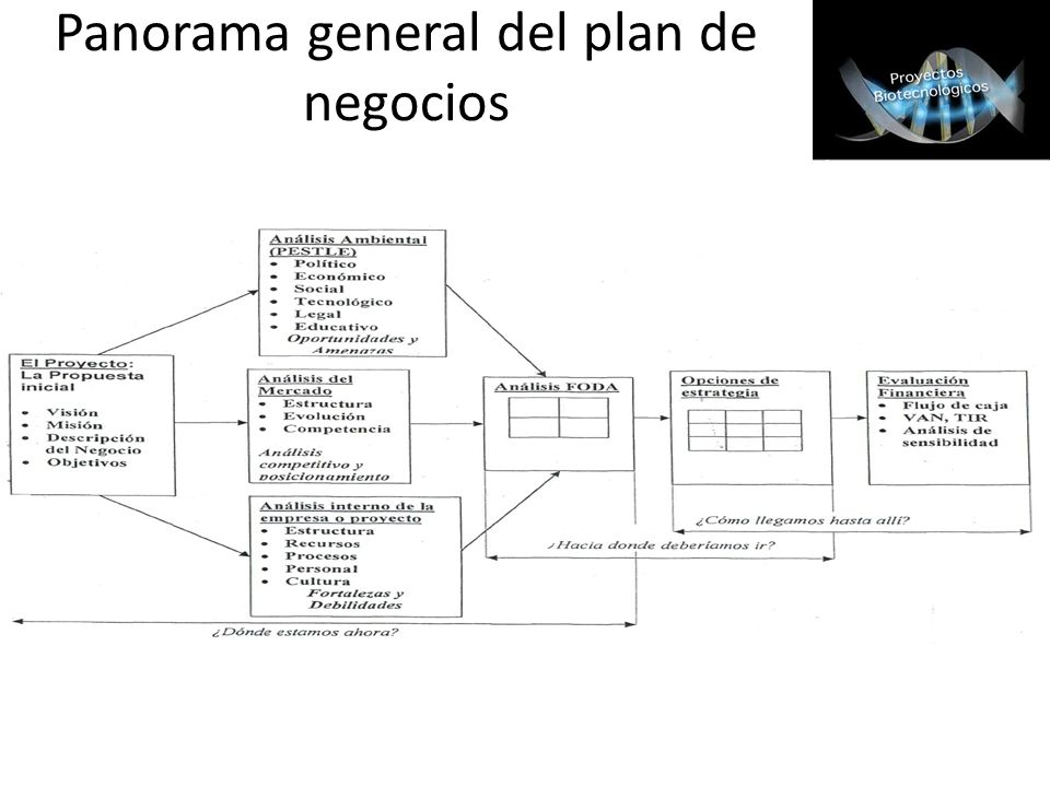 Panorama general del plan de negocios
