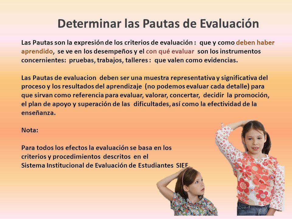 Determinar las Pautas de Evaluación