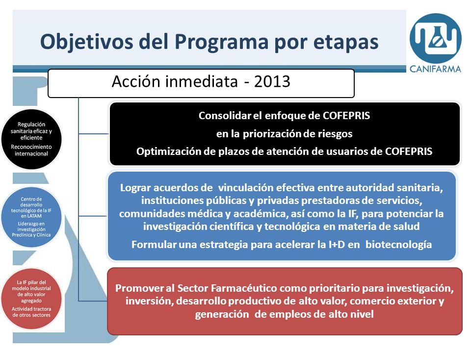 Objetivos del Programa por etapas