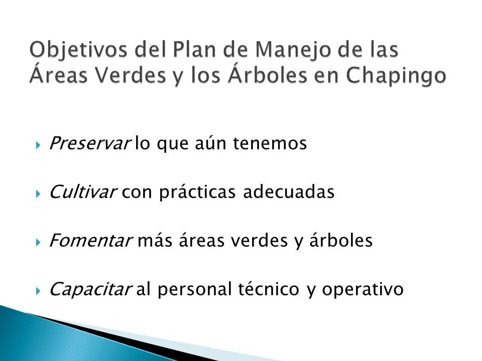 Objetivos del Plan de Manejo de las Áreas Verdes y los Árboles en Chapingo
