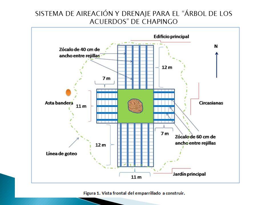 SISTEMA DE AIREACIÓN Y DRENAJE PARA EL ÁRBOL DE LOS ACUERDOS DE CHAPINGO