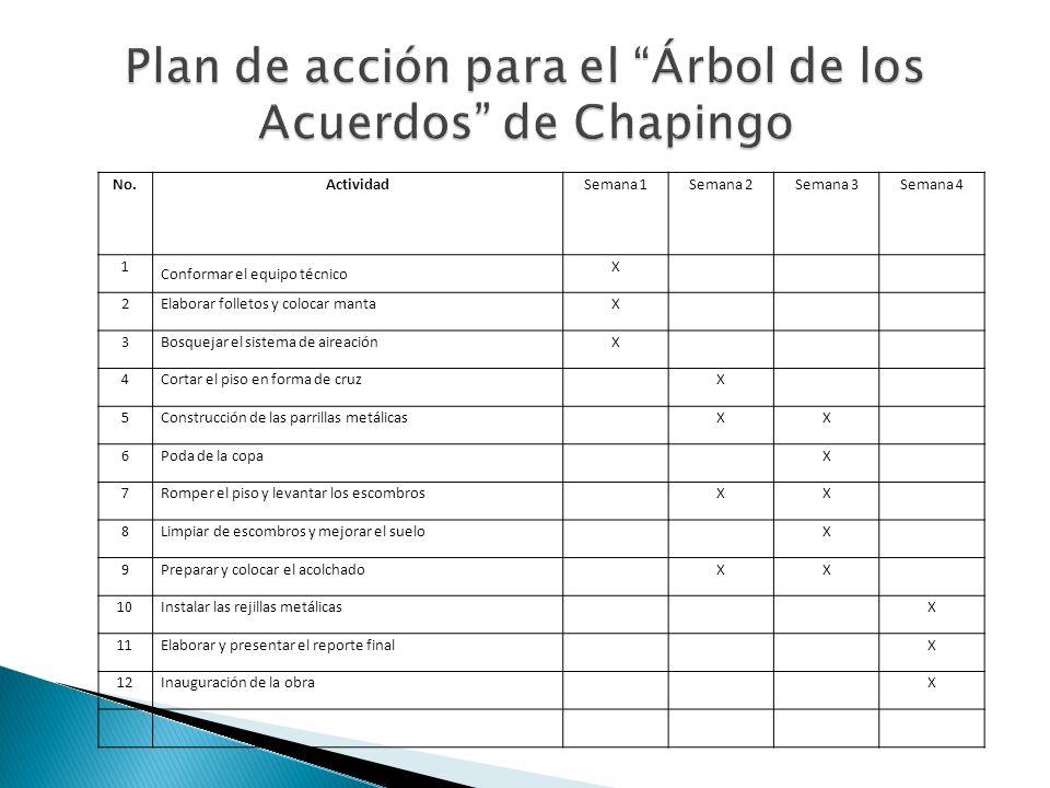 Plan de acción para el Árbol de los Acuerdos de Chapingo