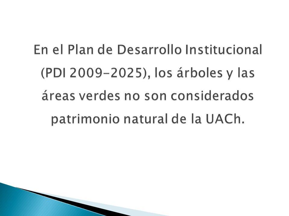 En el Plan de Desarrollo Institucional (PDI 2009-2025), los árboles y las áreas verdes no son considerados patrimonio natural de la UACh.
