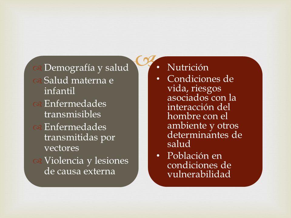 Demografía y salud Salud materna e infantil. Enfermedades transmisibles. Enfermedades transmitidas por vectores.