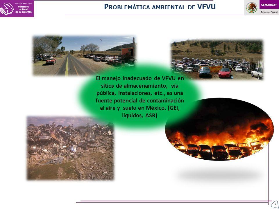 Problemática ambiental de VFVU