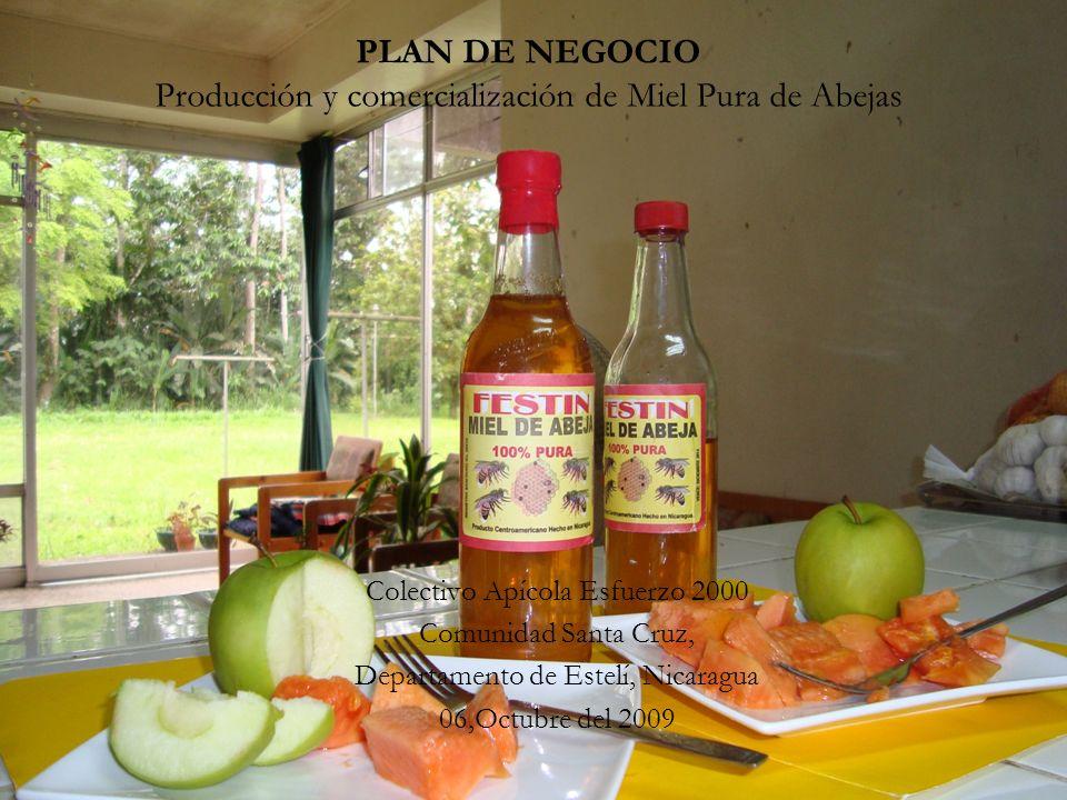 PLAN DE NEGOCIO Producción y comercialización de Miel Pura de Abejas