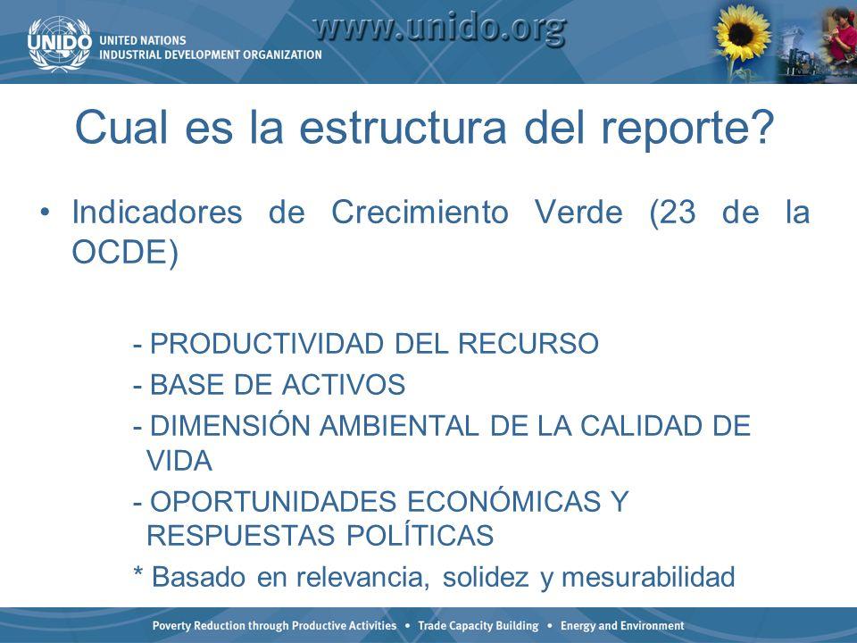 Cual es la estructura del reporte