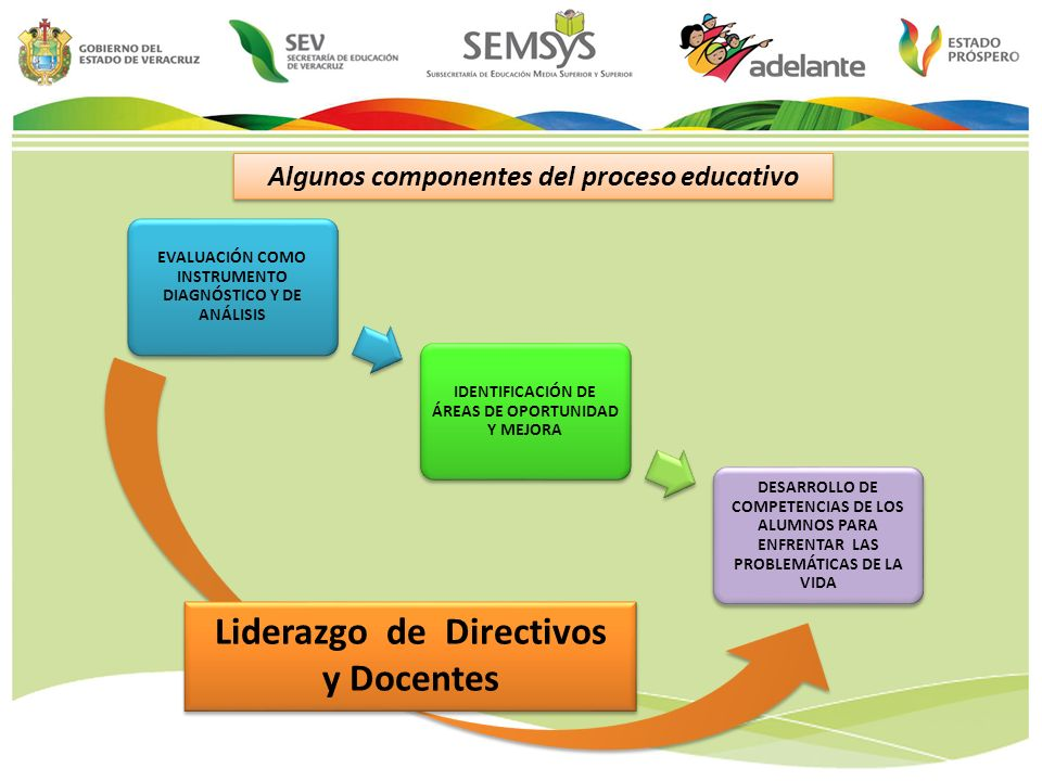 Algunos componentes del proceso educativo