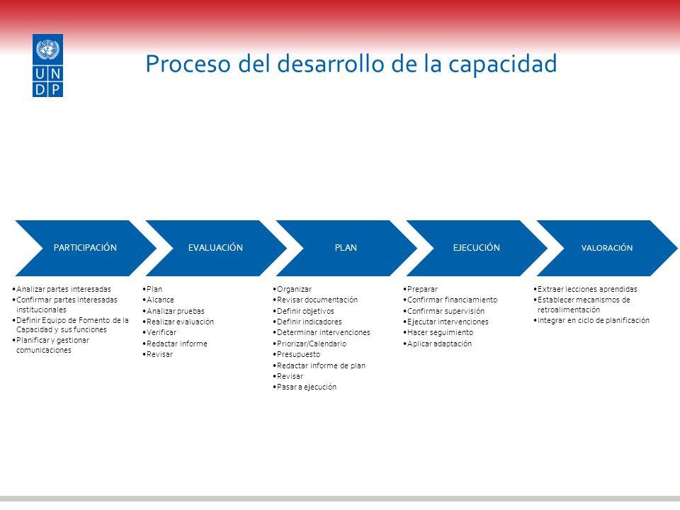 Proceso del desarrollo de la capacidad
