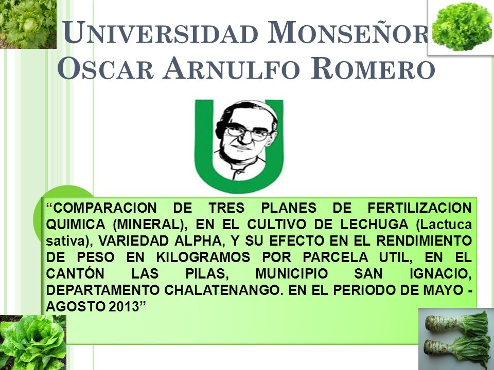 Universidad Monseñor Oscar Arnulfo Romero