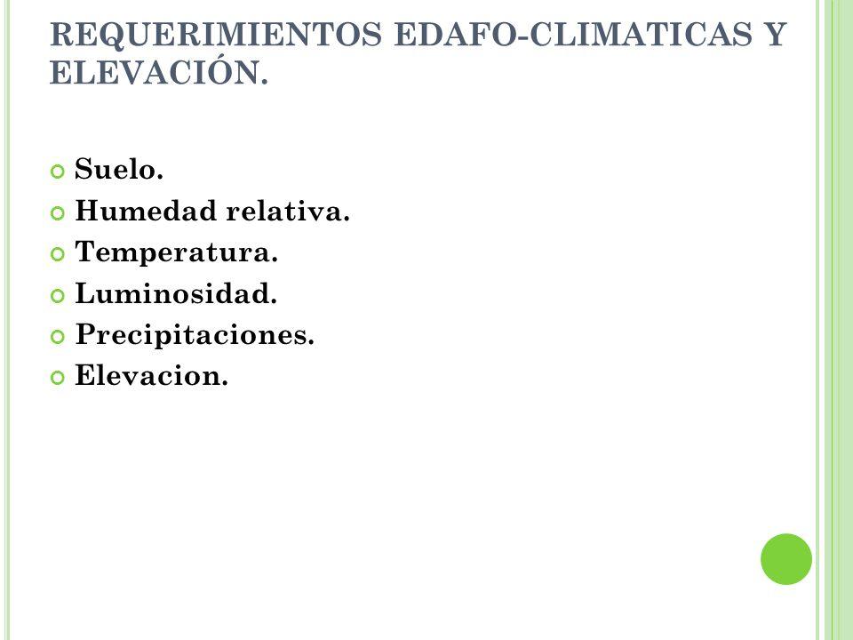 REQUERIMIENTOS EDAFO-CLIMATICAS Y ELEVACIÓN.