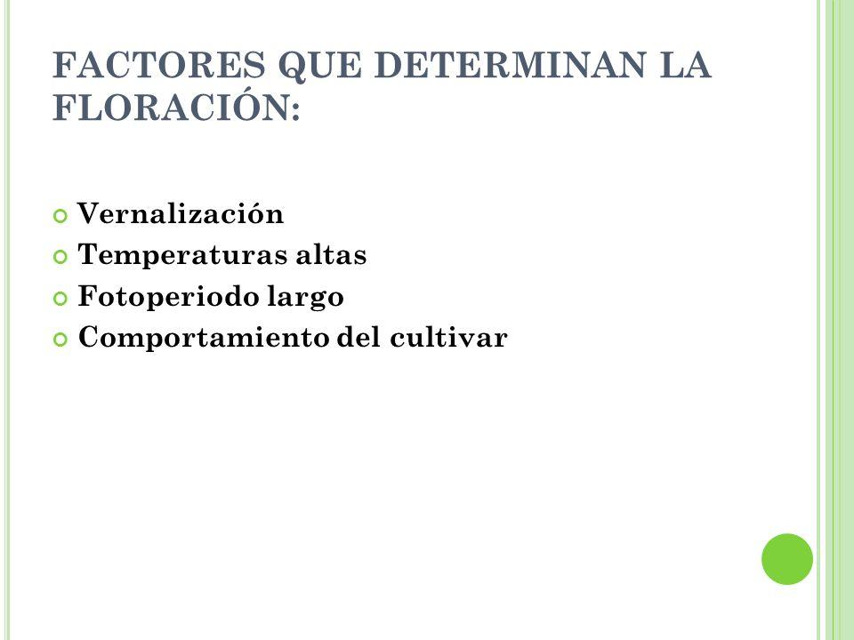 FACTORES QUE DETERMINAN LA FLORACIÓN: