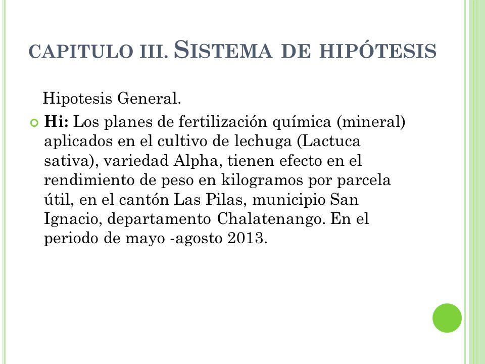CAPITULO III. Sistema de hipótesis