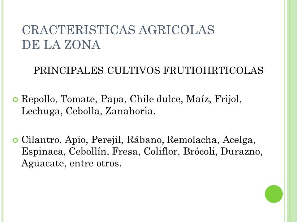 CRACTERISTICAS AGRICOLAS DE LA ZONA