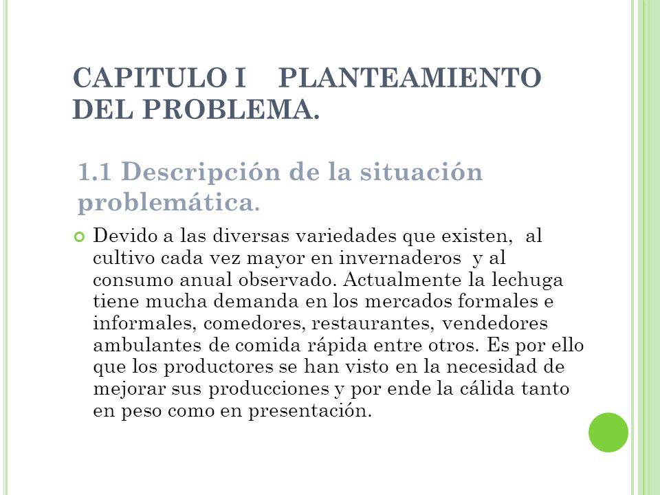 CAPITULO I PLANTEAMIENTO DEL PROBLEMA.