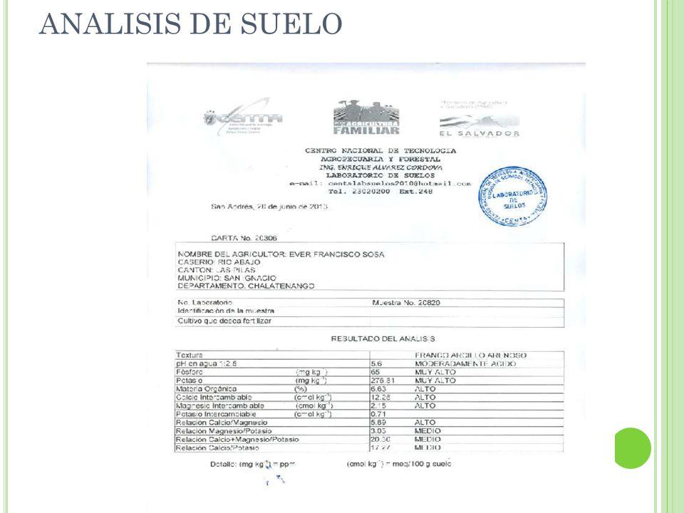 ANALISIS DE SUELO