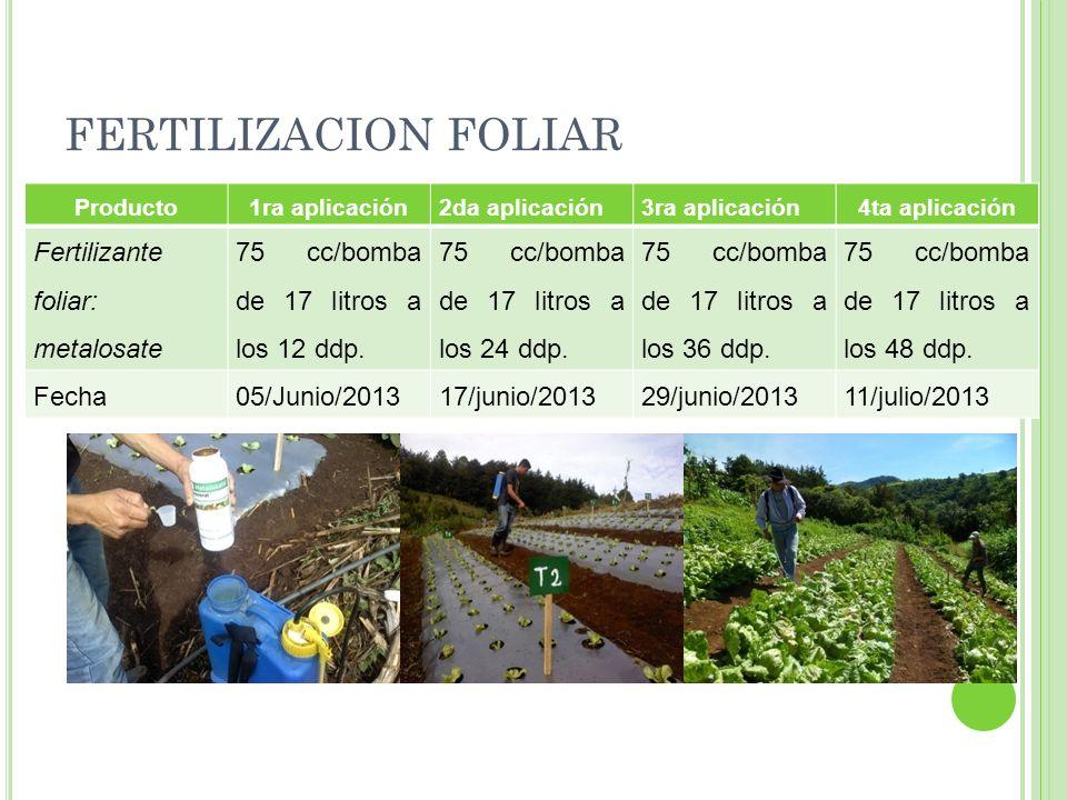 FERTILIZACION FOLIAR Fertilizante foliar: metalosate
