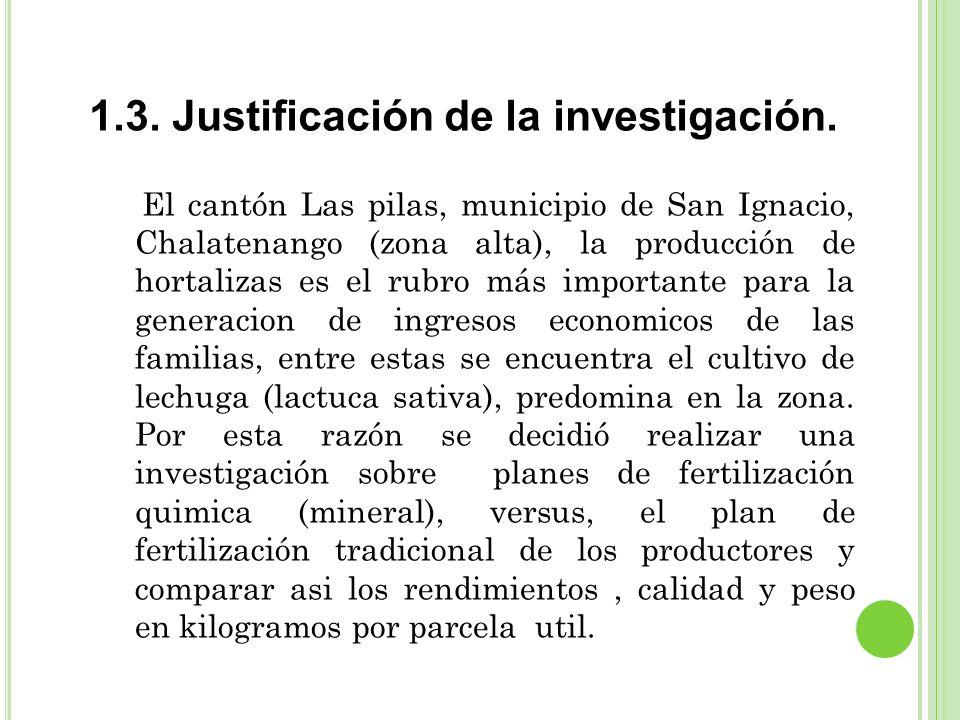 1.3. Justificación de la investigación.