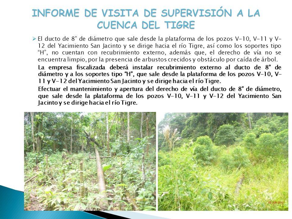 INFORME DE VISITA DE SUPERVISIÓN A LA CUENCA DEL TIGRE