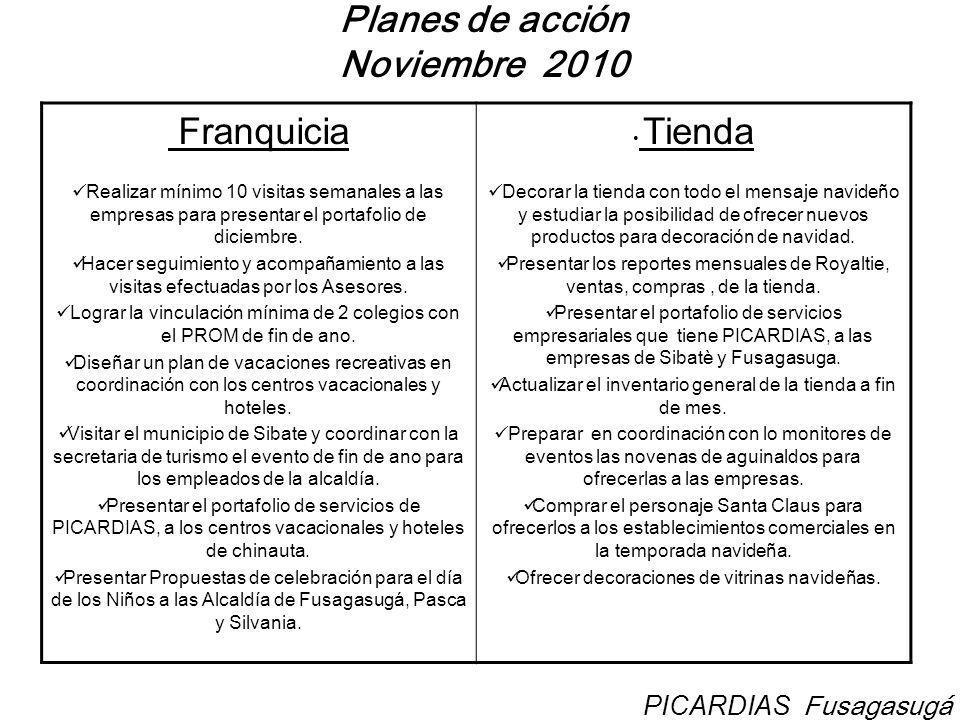 Planes de acción Noviembre 2010